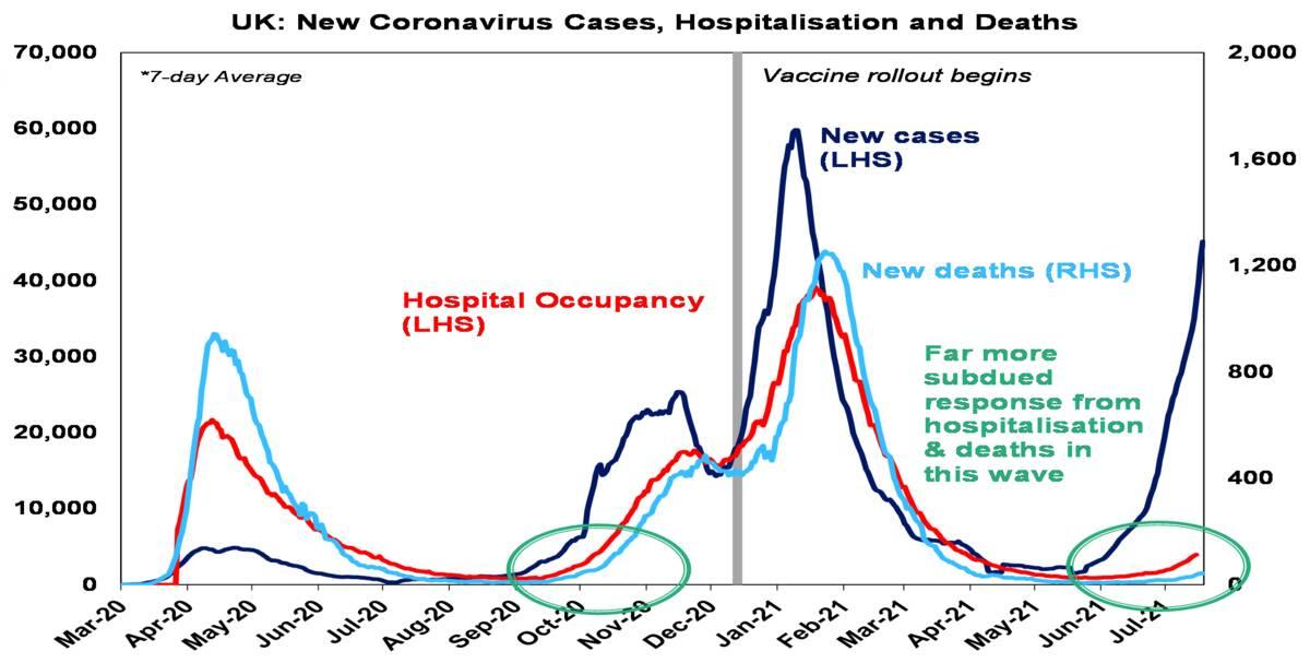 New cornonavirus cases hospitalizations and deaths